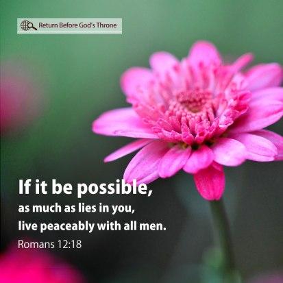Romans-12_18-H031S-1